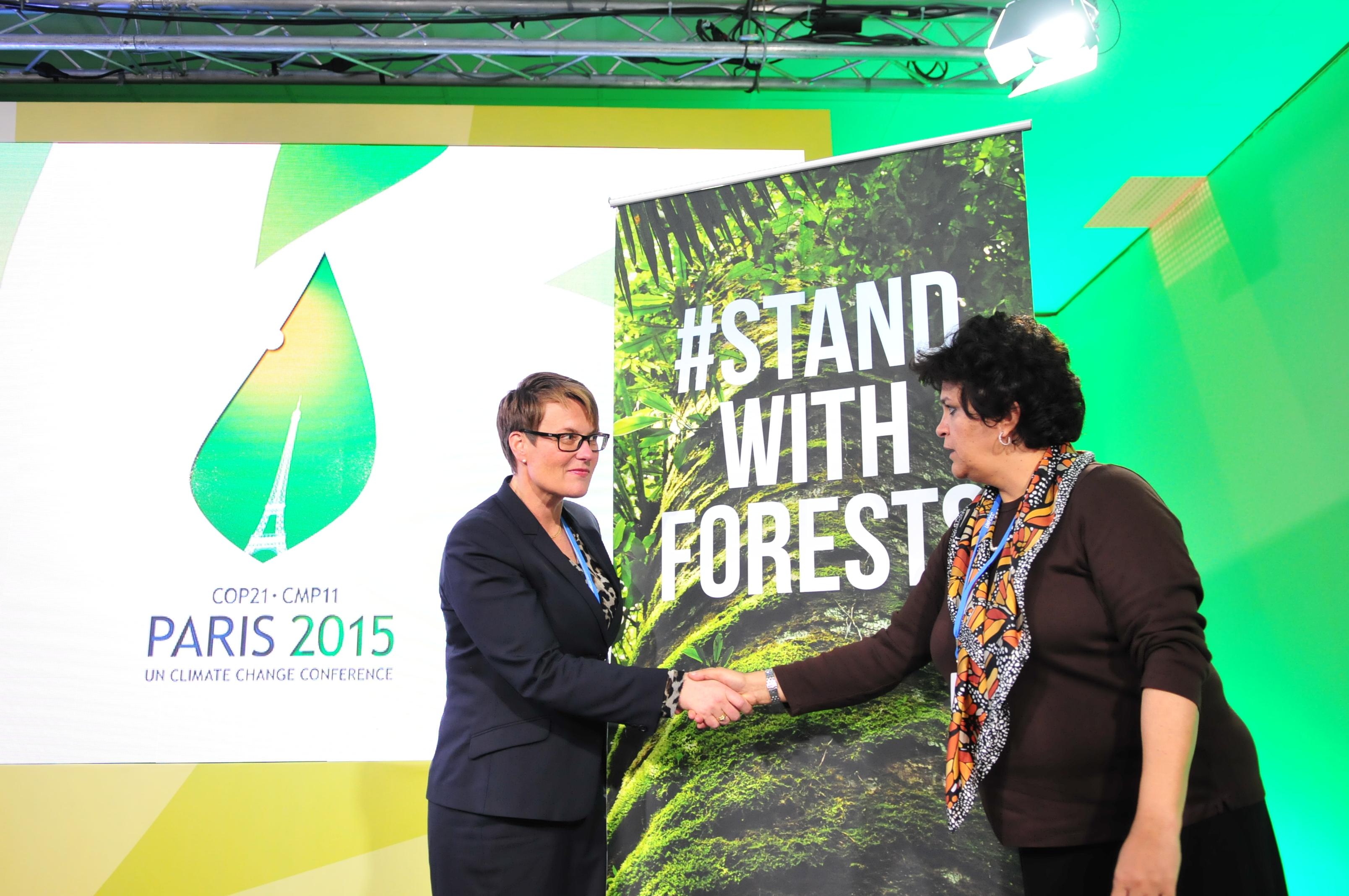 Brasil e Noruega prorrogam parceria até 2020