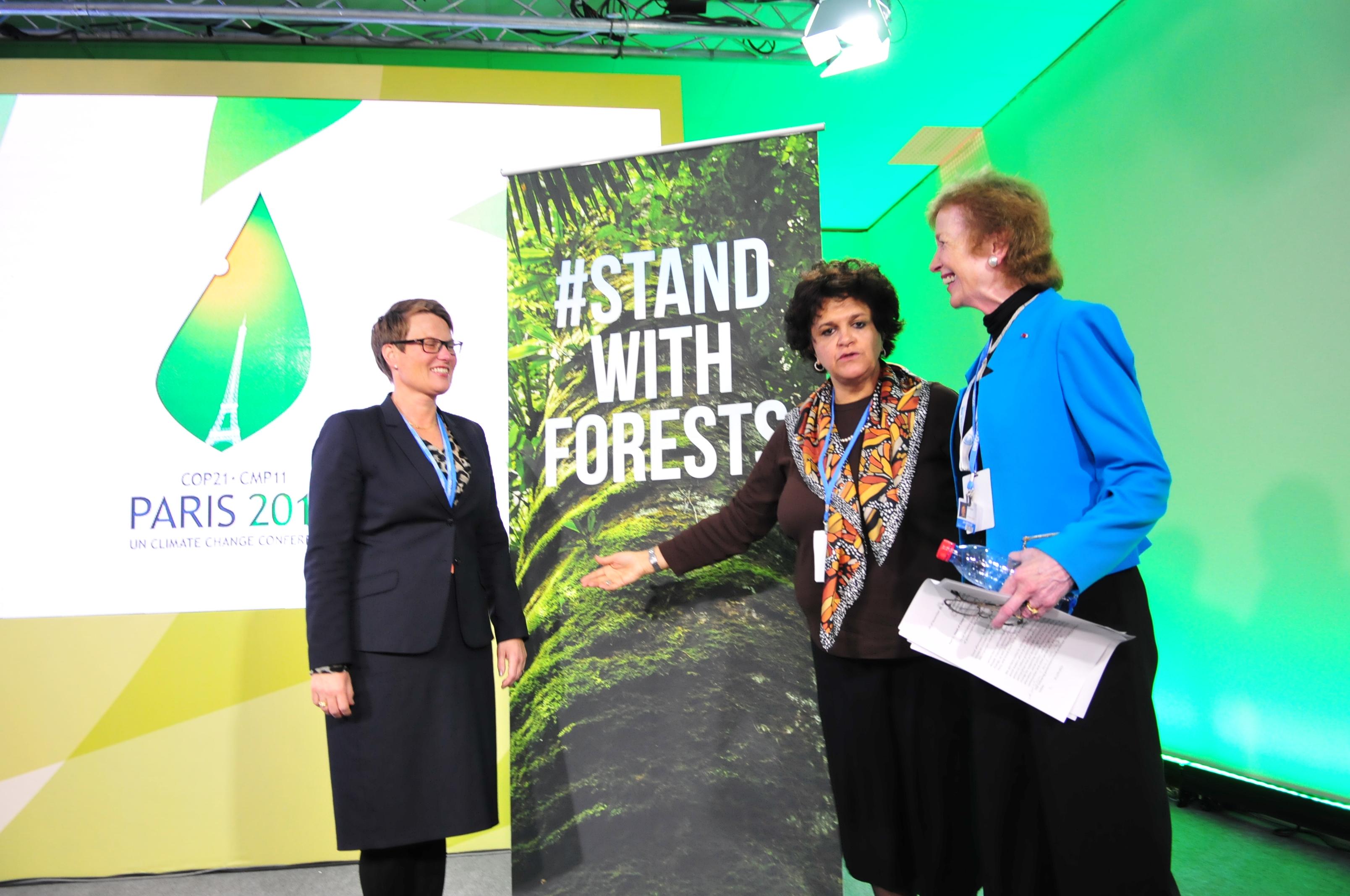 Anunciadas ações conjuntas para florestas