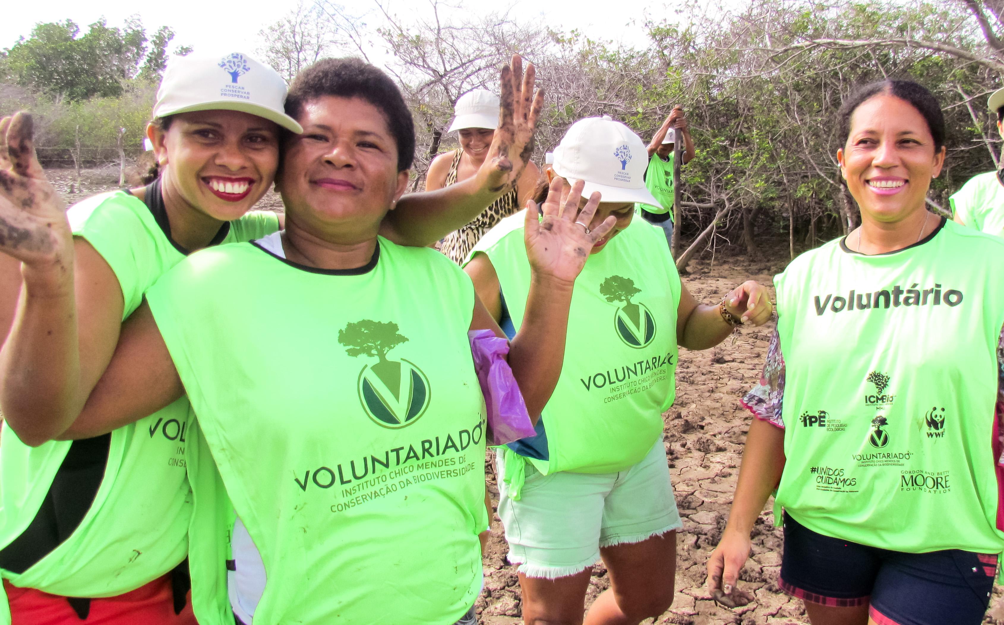 Mutirão faz plantio de mangue no Maranhão