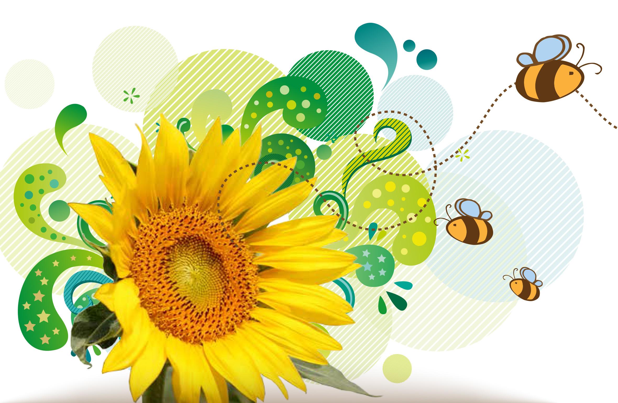 Simpósio discute perda de abelhas no Brasil