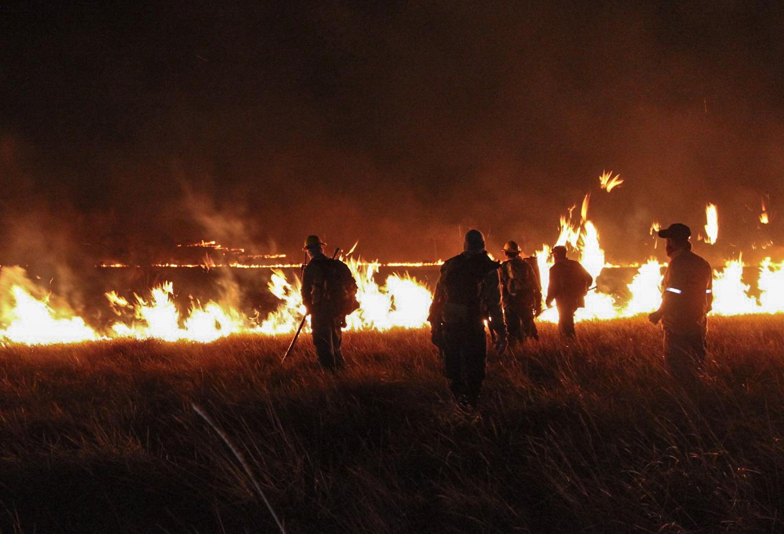 Defesa apoia combate ao fogo em Veadeiros
