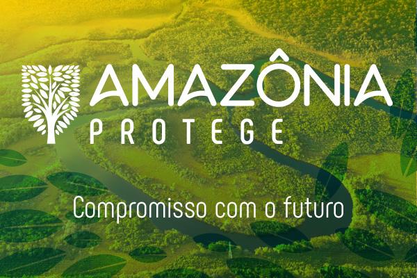 Ação coordenada combaterá desmatamento
