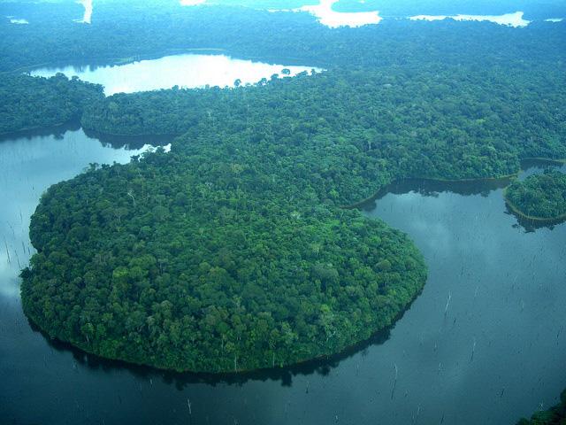 Aberta consulta sobre Fundo Verde do Clima