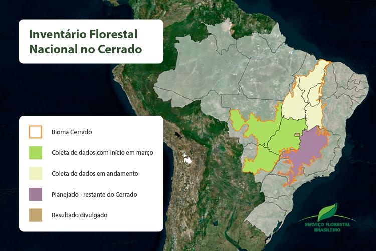 Inventário chega a quase 80% do Cerrado