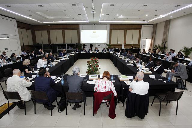 Nações fortalecem recuperação florestal