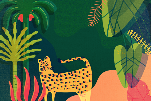 Biodiversidade é tema de série especial