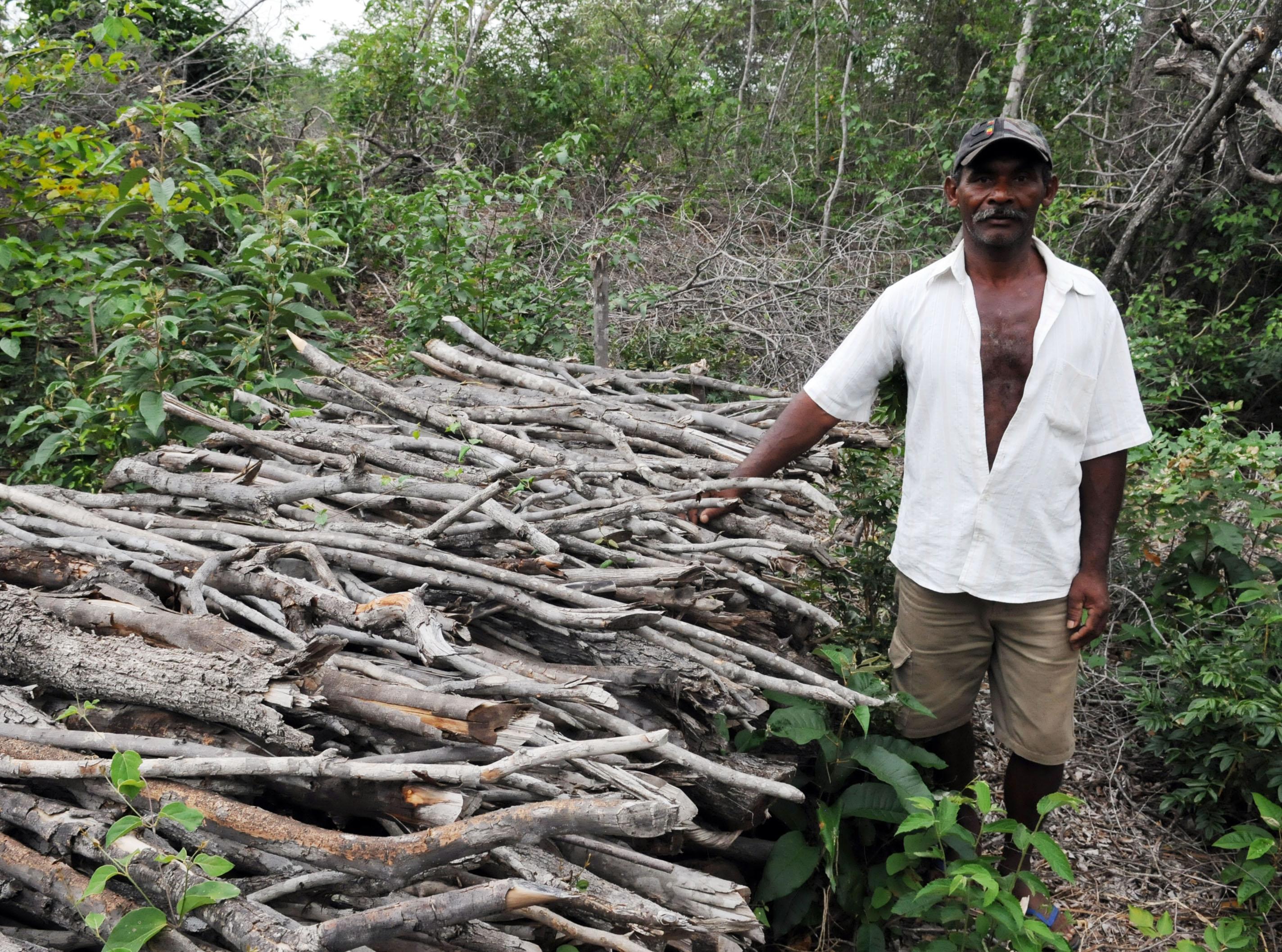 Manejo florestal melhora vida de mil famílias e reduz pressão de desmatamento no semiárido
